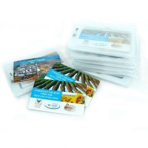 דיסק און קי דמוי כרטיס ביקור דוגמא עבה